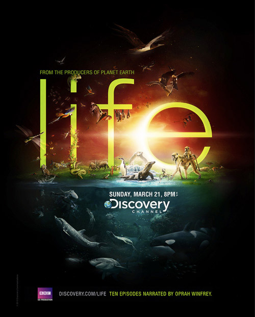 Discovery-Channel–Life