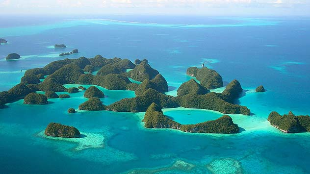 biodiversity_palau_island_polynesia