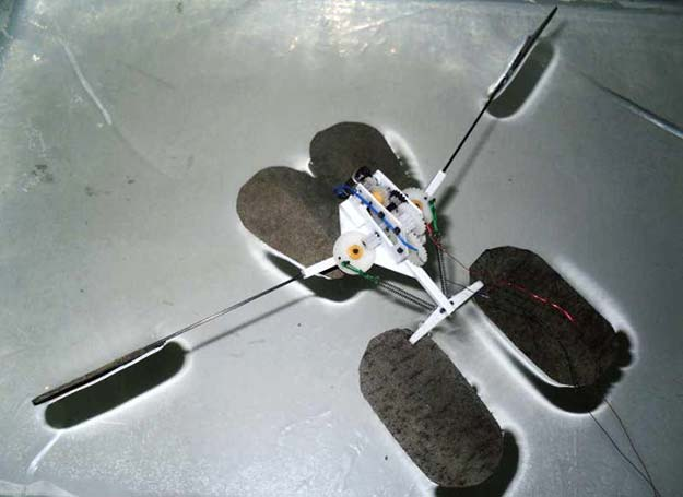 First-Robot-That-Mimics-the-Water-Striders