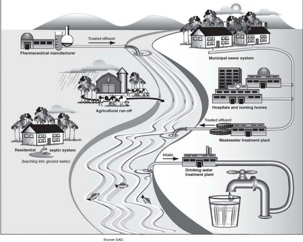 Pharmaceuticals can enter the water supply in a variety of ways. Debates continue over how dangerous this is. Source: GAO