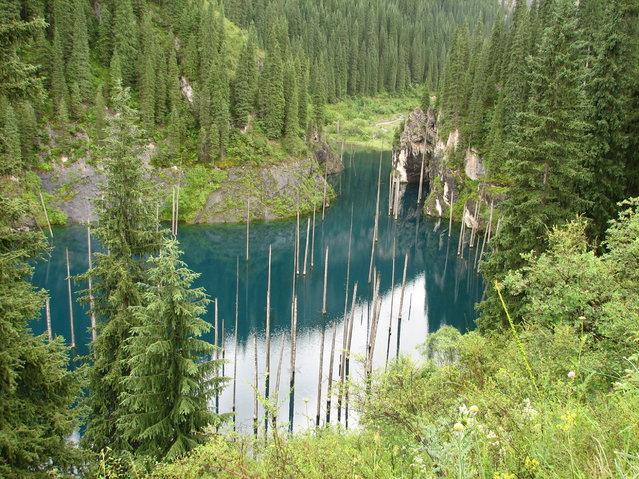 Kaindy-Lake-in-Kazakhstan10