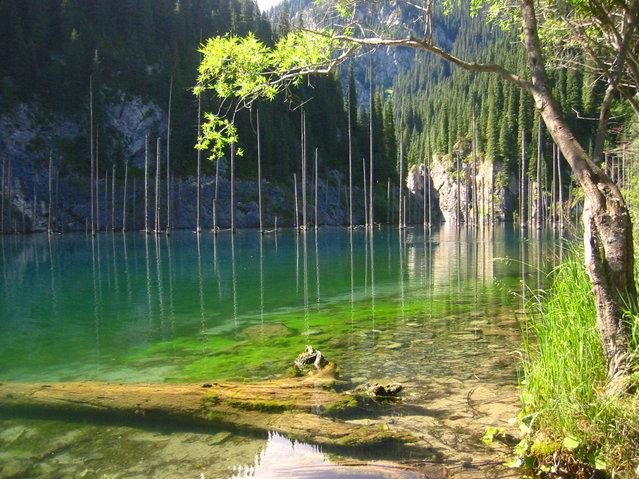 Kaindy-Lake-in-Kazakhstan3