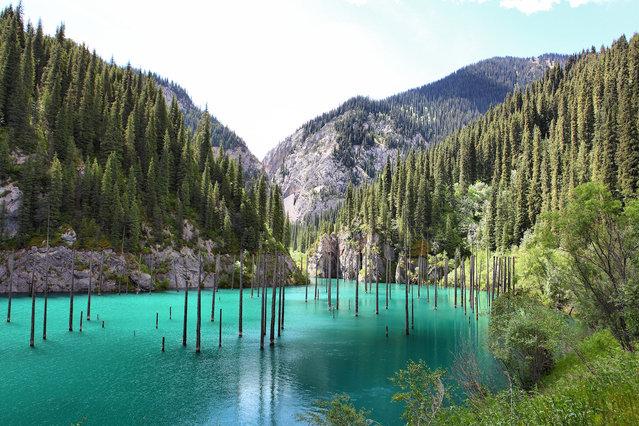 Kaindy-Lake-in-Kazakhstan6