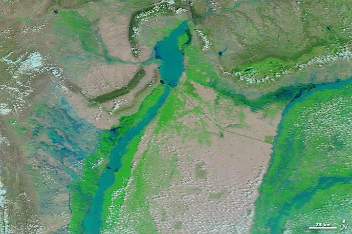 pakistan_tmo_2010212