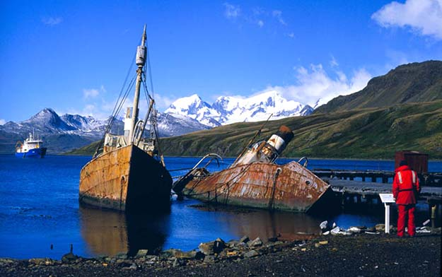 abandoned-whaling-boats-at-grytviken-south-georgia