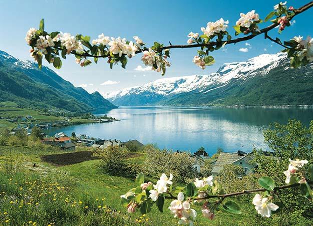 Hardangerfjorden18
