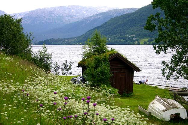 Hardangerfjorden20