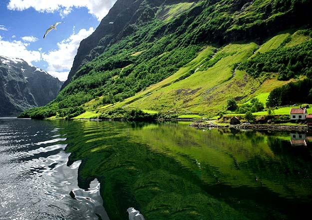 Sognefjorden1
