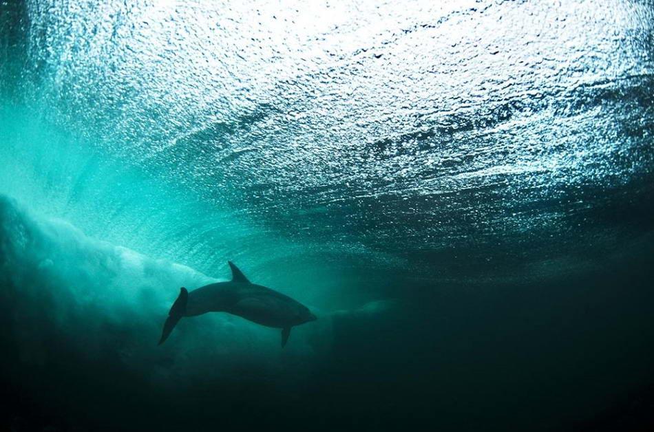 удивительная красота воды. фото