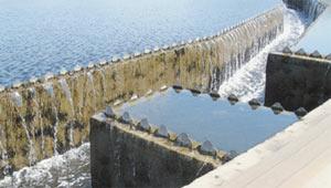 Из отстойника в лоток попадает вода только из поверхностного слоя. Она стекает через впадины гребёнки, идущей по всему периметру лотка.