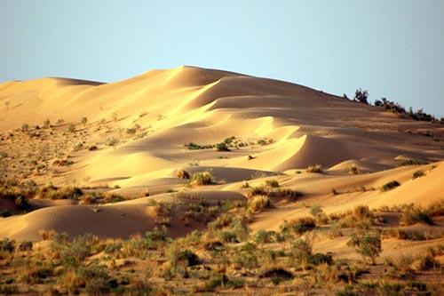 Kolodcy-v-pustyne03
